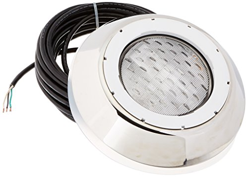 Pentair 78864200 AquaLumin III Nicheless Vinyl Liner Pool and Spa Light, 250-Watt, 120-Volt, 50-Feet Cord Length