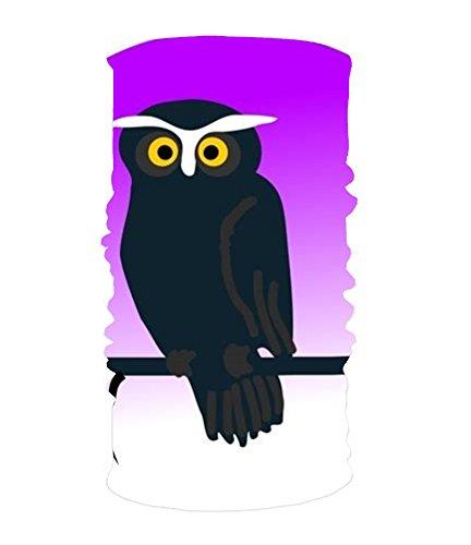 XPNiao Stylish Clipart Halloween Owl UV Headband Quick Dry Ultra Soft Elastic Handscarf Microfiber Headwear Outdoor Bandana Magic Scarf Face Mask Unisex -