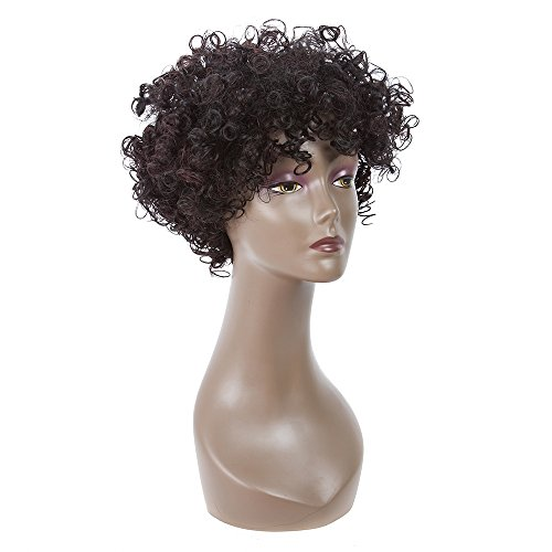 Search : LMY Hair Short Red Brown Curly Wigs For Black Women Heat Resistant Synthetic Wig For Women African American Women's Hair Wigs(red brown)