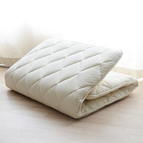 comfortable futon mattress reviews