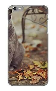 New Style Pirntalonzi Hard Case Cover For Iphone 6 Plus- Animal Cat