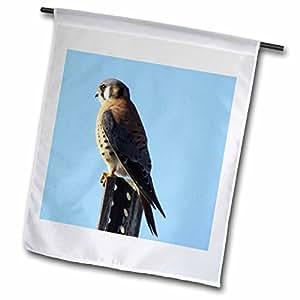 Jackie Popp Nature n Wildlife Food - Krestral - 18 x 27 inch Garden Flag (fl_50346_2)
