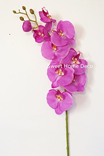 21' Phalaenopsis Orchid (Sweet Home Deco 38'' Large Phalaenopsis Orchid Latex Coated Real Touch Artificial Flower (Wedding/Party/Home Decorations) (Purple))