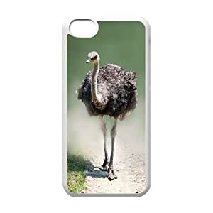 Custom New Cover Case for Iphone 5C, The Ostrich Phone Case - HL-R678531
