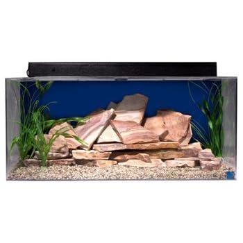 "SeaClear 40 gal Show Acrylic Aquarium Junior Executive Kit, 36 by 15 by 16"", Cobalt Blue"