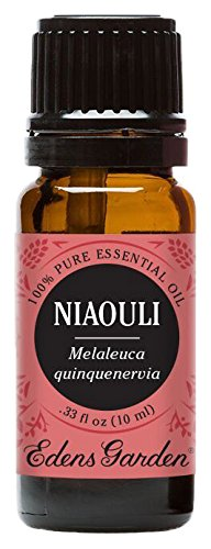 Edens Garden Niaouli 10 ml 100% Pure Undiluted Therapeutic Grade Essential Oil GC/MS Tested