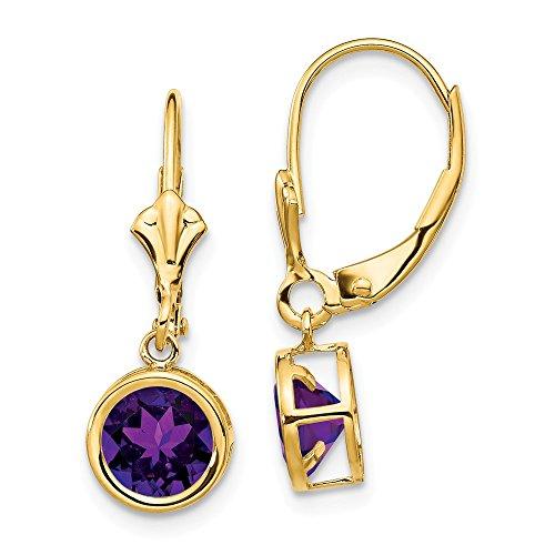 (14k Yellow Gold 6mm Purple Amethyst Leverback Earrings Lever Back Drop Dangle Gemstone Bezel Fine Jewelry Gifts For Women For Her)