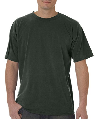 Comfort Colors By Chouinard Adult Ring-Spun Tee (Willow) (M) (5500 Colour)