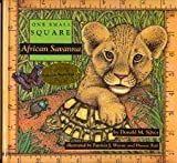 img - for African Savanna (One Small Square) book / textbook / text book