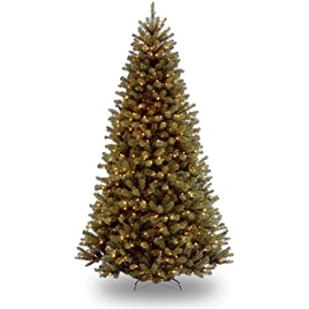 National Tree 9 Foot North Valley Spruce Tree with 700 Clear Lights, Hinged (NRV7-300-90)