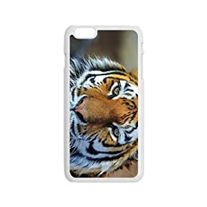 Tiger Face Hight Quality Plastic Case for Iphone 6