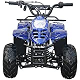 Coolster ATV-3050C 110cc Fully Automatic Mini Size for Kids Spider Blue
