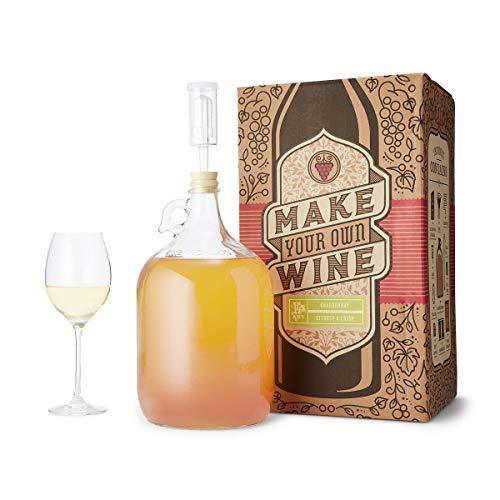 the 1 gallon fruit winemaking kit - 5