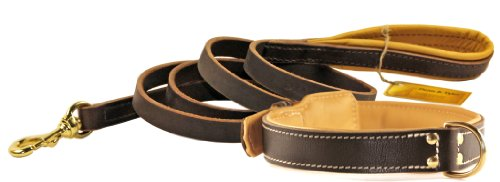 Dean and Tyler Bundle One Italian Tailor Collar Brown Padding, 22 by 1-1/2 with One Matching Soft Touch Leash, 6-Feet…