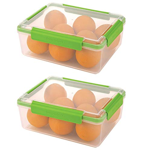 SnapLock by Progressive 20-Cup Container - Green, SNL-1011G Easy-To-Open, Leak-Proof Silicone Seal, Snap-Off Lid, Stackable, BPA FREE (2 Pack)