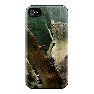 Fashion Protective Koala Bear Case Cover For Iphone 4/4s by icecream design