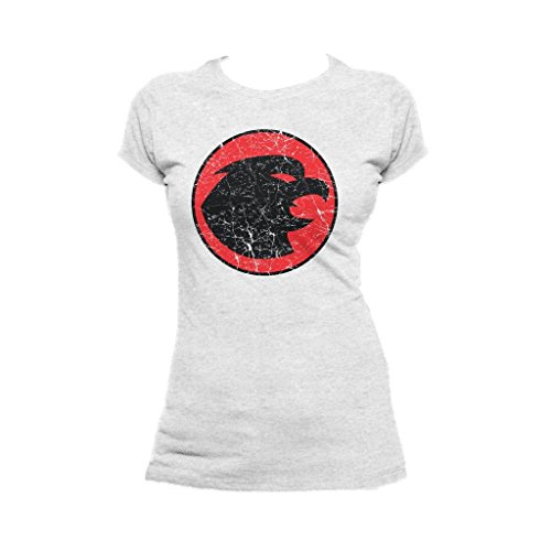 Urban Species DC Comics Hawkgirl Distressed Logo Official Women's T-Shirt (Heather Grey) (Hawkgirl T Shirt)