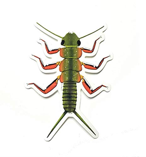 Fishing Fly Trout Brook - The Fly Crate Fly Fishing Decal Sticker (Brook Trout Stonefly Nymph)