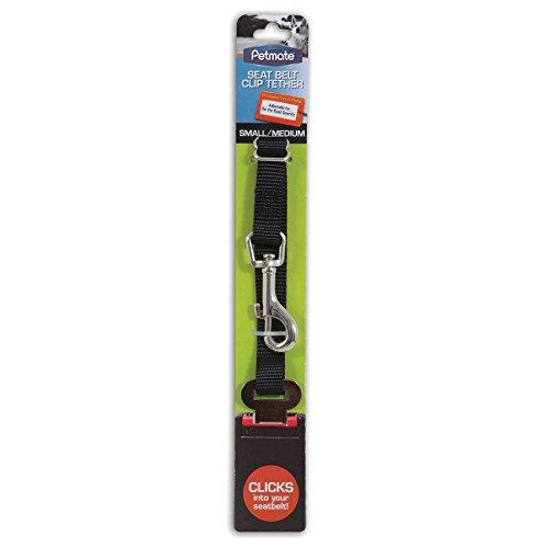 Seat Belt Loop - 6