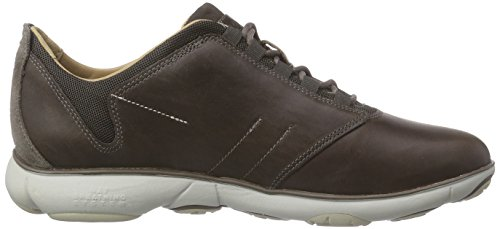 Geox U NEBULA A - zapatilla deportiva de cuero hombre Marrón - Braun (DOVE GREYC1018)