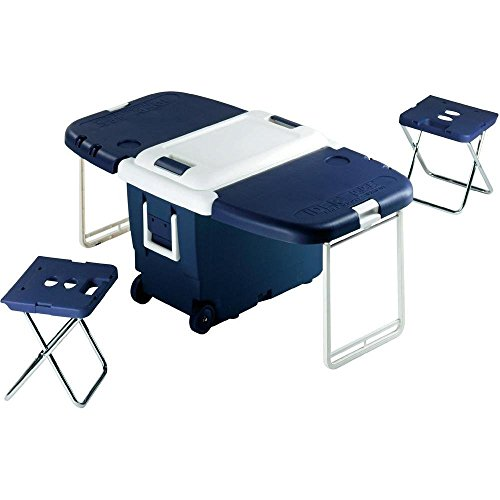Ezetil - Nevera de camping convertible con mesa (30 L, 55 x 37 x 41 cm), color azul y blanco