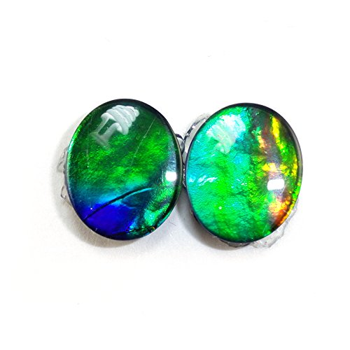AAA Quality Tri-Color Ammolite Oval Cut 12x10mm Matched Pair Approximatley 5.85 Carat Triplet (12314)