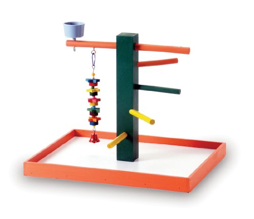 Prevue Hendryx Pet Products Big Steps Playground Big Bird Products Bird