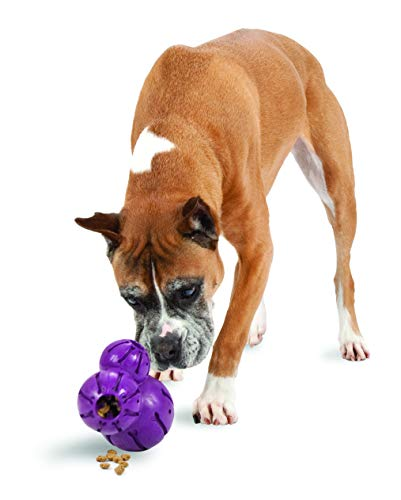 - PetSafe Busy Buddy Barnacle Dog Toy, Large
