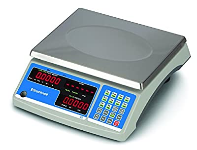 Brecknell B140 General Purpose Counting/Coin Scale, 30lb Capacity, Counting and Coin Function, Steel, Plastic