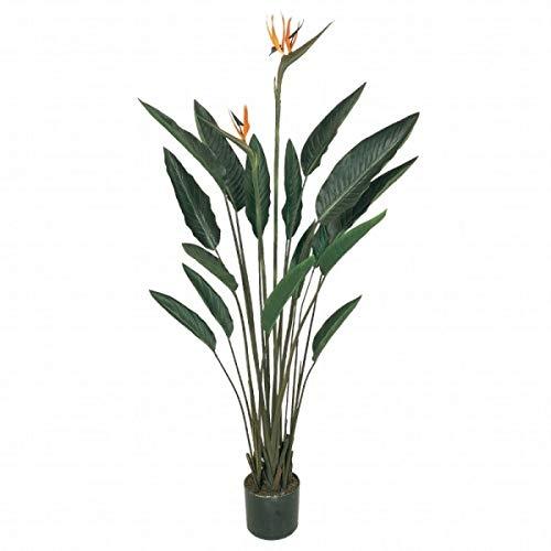 人工観葉植物 ストレチアプラント 高さ140cm fg7416 (代引き不可) インテリアグリーン 造花 B07SV6NWDY