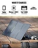 Goal Zero Unisex's Nomad 20 Solar Panel, Black, one