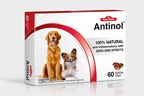 Vetz Petz Antinol 100% Natural. Healthy Joint, Skin and Cardio Vascular Maintenance.60 Caps for Dogs x2 Packs