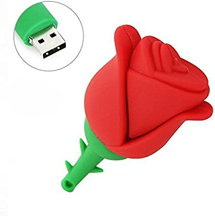 WooTeck 16GB Cartoon Lovely Rose Flower USB Flash Drive,Red