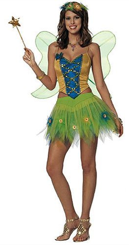 Adult Woodland Fairy Costume - Womens Small