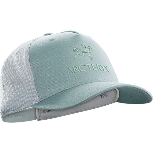 Arc'teryx Logo Trucker Hat (Petrikor/Dew Drop) from Arc'teryx