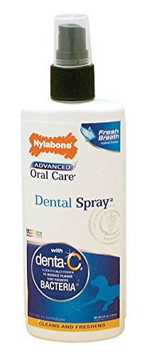 Dog Breath Spray (Nylabone Advanced Oral Care 4 oz Dog Dental Spray)