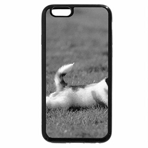iPhone 6S Plus Case, iPhone 6 Plus Case (Black & White) - Ball!!!!