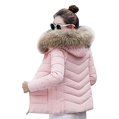 Pink Fina Para Párrafo Coreana Mujeres Señoras Corto Oro Plumón Gaolixia De Invierno Moda Chaqueta Algodón Rz6wq1