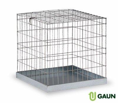 Gaun Jaula EXPOSICION PEQUEÑA 60 X 60: Amazon.es: Productos para ...