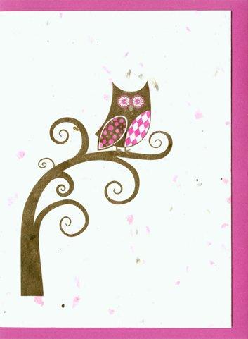 Grow A Note® Argyle Owl Cards 4-pack