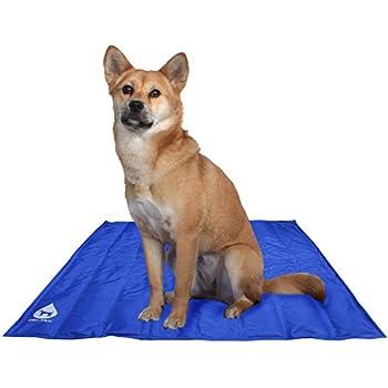 Amazon Com American Kennel Club Dri Tail Reversible