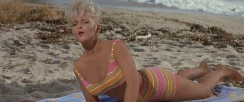 Image result for Mr. Hobbs Takes a Vacation 1962 bathing suit
