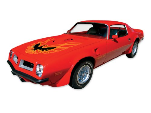 1973 1974 1975 1976 1977 1978 Pontiac Firebird Trans Am Decals & Stripes Kit - ORANGE