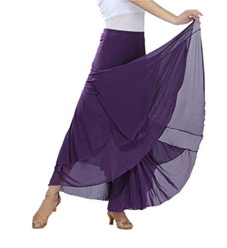 Elegant Mesh Long Swing Tango Waltz Dance Skirt for Women Purple, One Size (Dress Dance Waltz)
