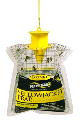 rescue-yjtd-w-non-toxic-disposable-yellow-jacket-trap-west-of-the-rockies