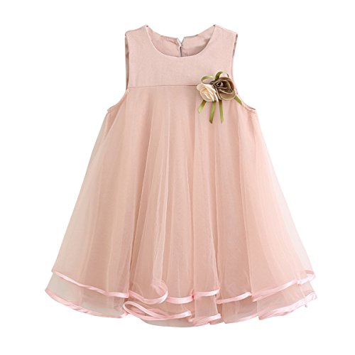 1-6T Kid Baby Girl Flower Girls Tulle Lace Dress for Birthday Prom - Dress A Kind