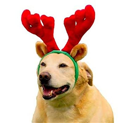 Outward Hound Kyjen PP01763 Holiday Antlers Wearable Dog Accessories, Large, Brown