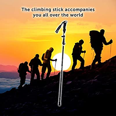 Trekking Poles – Collapsible, Lightweight, Shock-Absorbent, Walking & Running Sticks, Quick Locks, 4 Season and Carry Bag
