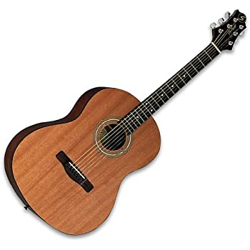 samick greg bennett design st91 acoustic guitar satin natural musical instruments. Black Bedroom Furniture Sets. Home Design Ideas