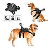 Hound Dog Fetch Harness Chest Strap Belt Mount - iKNOWTECH GoPro Dog Mount Harness Adjustable Chest Strap Mount Belt Fetch for GoPro Hero 6 5 5 Session 4 Session 4 3+ 3 2 1 - Yi Action Cameras
